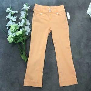ANTHROPOLOGIE high-rise cropped flared jean 26 new